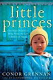 Little Princes: One Mans Promise to Bring Home the Lost Children of Nepal by Grennan, Conor (2011) Paperback