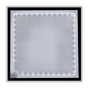 "Rosco LitePad HO + Daylight (5800K) 3"" CIRCLE Featherweight LED Panel"