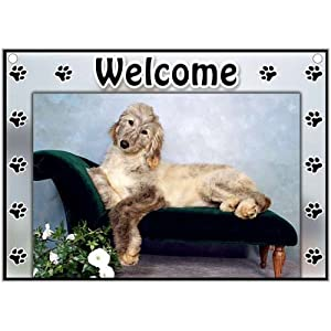 Afghan Hound Welcome Sign