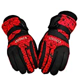 GVDV Winter Snow, Snowboard Windproof Waterproof Warm Outdoor Ski Gloves (One pair included) (Red)