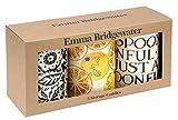 Emma Bridgewater - Game Engineering Controls boxes , 3 units