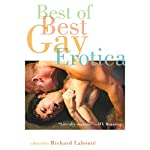 Best of Best Gay Erotica 2 | Richard Labonte (editor)