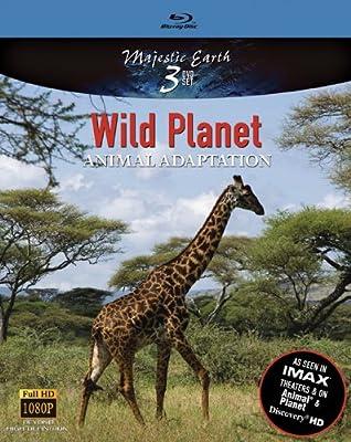 Wild Planet Animal Adaptation