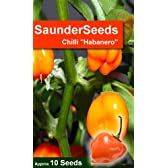 Orange Habanero Chilli seeds. Grow your own peppers. This mega hot mexican favourite is a perfect gift f