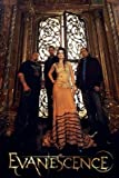 Evanescence - Poster 24x36 inches - SMART ART