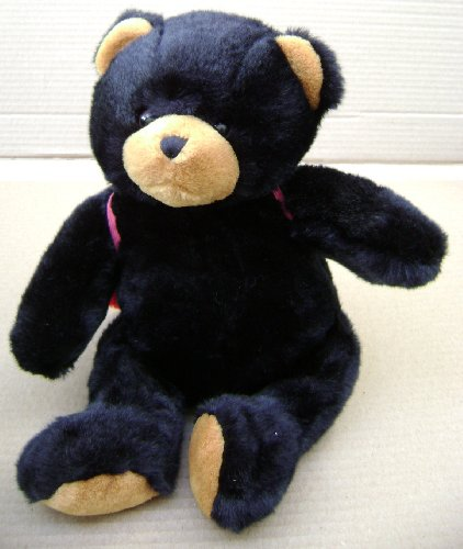 Black Teddy Bear with Lady Bug Cape Stuffed Animal Plush Toy - 16 inches tall