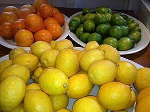 Fresh Sunshine Citrus Trio Oranges, Limes, and Lemons From Organic Mountain (36 Fruit (12 of Each))