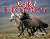 2014 Wild Horses