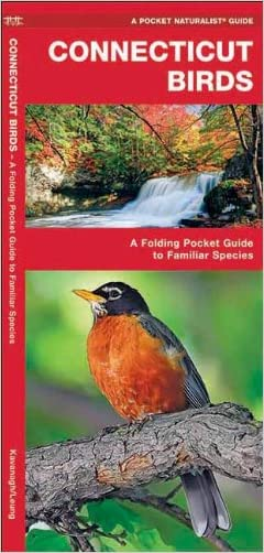 Connecticut Birds: A Folding Pocket Guide to Familiar Species (Pocket Naturalist Guide Series)