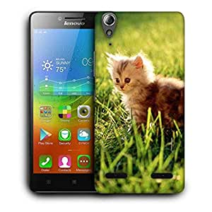 Snoogg Baby Cat Printed Protective Phone Back Case Cover For Lenovo A6000