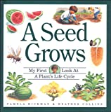 img - for Seed Grows, A (My First Look At... Series) book / textbook / text book