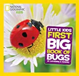 Catherine D. Hughes First Big Book of Bugs (National Geographic Little Kids)