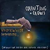 Underwater Sunshine: Or What We Did On Our Summer Counting Crows