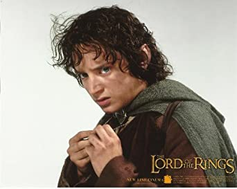 Lord Of The Rings Frodo Holding Ring Poster