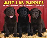 Just Lab Puppies 2014 Wall Calendar