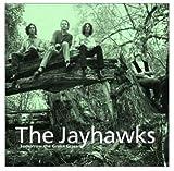 echange, troc The Jayhawks - Tomorrow The Green Grass