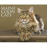Maine Coon Cats 2014 Wall Calendar