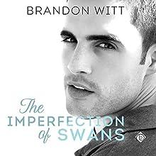 The Imperfection of Swans | Livre audio Auteur(s) : Brandon Witt Narrateur(s) : Kirt Graves