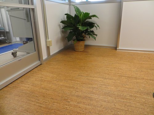 Amorim Cork Flooring Buy Amorim Cork Flooring products online in