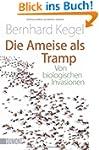 Die Ameise als Tramp: Von biologische...