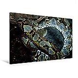 Premium Textil-Leinwand 120 cm x 80 cm quer, Gefährliche Schlangen -  Der Netzpython (1) | Wandbild, Bild auf Keilrahmen, Fertigbild auf echter ... und ewigem Leben. (CALVENDO Tiere)