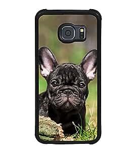 Cute Dog 2D Hard Polycarbonate Designer Back Case Cover for Samsung Galaxy S6 G920I :: Samsung Galaxy G9200 G9208 G9208/SS G9209 G920A G920F G920FD G920S G920T