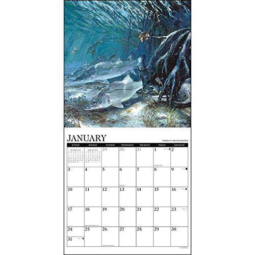 Saltwater game fish 2016 wall calendar sporting goods for Hunt fish calendar