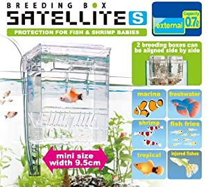 External / Hang On Plastic Aquarium Fish Breeding Box Satellite S (new)