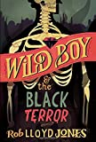 img - for Wild Boy and the Black Terror book / textbook / text book
