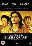 What's Eating Gilbert Grape [DVD] [1993]