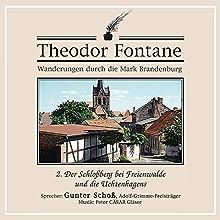 Der Schloßberg bei Freienwalde und die Uchtenhagens (Wanderungen durch die Mark Brandenburg 2) Hörbuch von Theodor Fontane Gesprochen von: Gunter Schoß