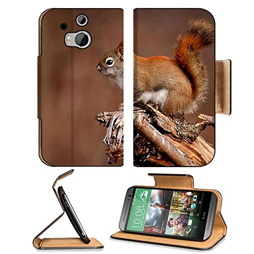 Squirrel Animal Branch Tree Sit Htc One M8 Flip Case Stand Magnetic Cover Open Ports Customized Made To Order Support Ready Premium Deluxe Pu Leather 6 4/16 Inch (158Mm) X 3 4/16 Inch (82Mm) X 9/16 Inch (14Mm) Liil Htc1 Cover Professional M 8 Cases M_8 Ac front-703389