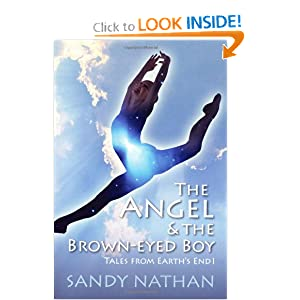 Download The Angel & the Brown-eyed Boy ebook