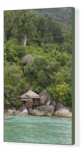 Canvas Print Of Rainforest And A Wooden Cabin Of The Bagus Place Retreat - A Small front-1066373