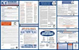 Kentucky Space Saver-1 All-On-One State and Federal Labor Law Poster (Kentucky State & Federal Labor Law)