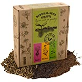 Organic Seeds for Sprouter - MIX - Beet / Mustard / Broccoli by VREMI TM