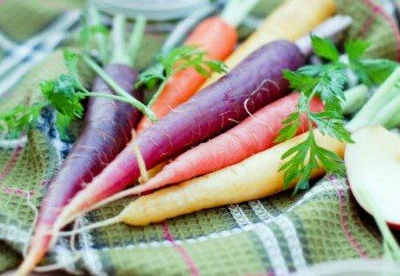 Organic Rainbow Carrots 50 Seeds Rainbow Carrot