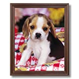 Beagle Puppy Dog Kids Room Animal Picture Framed Art Print Reviews