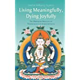 Living Meaningfully, Dying Joyfully: The Profound Practice of Transference of Consciousnessby Geshe Kelsang Gyatso