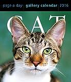 Cat 2016 Gallery Calendar (2016 Calendar)