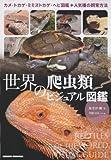 世界の爬虫類ビジュアル図鑑―カメ・トカゲ・ミミズトカゲ・ヘビ図鑑+人気種の飼育方法