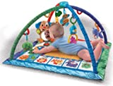 517kptGC6tL. SL160  Fisher Price Songs and Smiles Discovery Gym