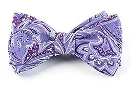 100% Woven Silk Lavender Paisley Self-Tie Bow Tie