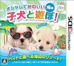 オシャレでかわいい子犬と遊ぼ! -海編-