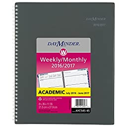 DayMinder Academic Year Weekly / Monthly Planner, July 2016 - June 2017, 8-1/2\