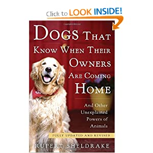 Dogs That Know When Their Owners Are Coming Home: Fully Updated and Revised Rupert Sheldrake