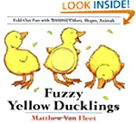 Fuzzy Yellow Ducklings