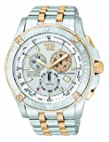Citizen Eco-Drive Gents' Perpetual Calendar Watch