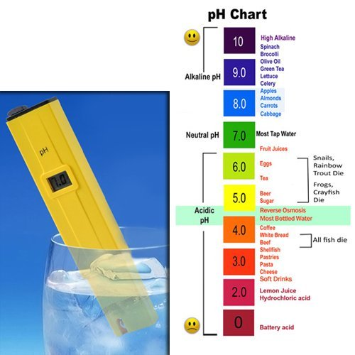 Digital PH Meter Tester for Aquarium Pond Pool