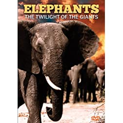 Elephants: the Twilight of the Giants